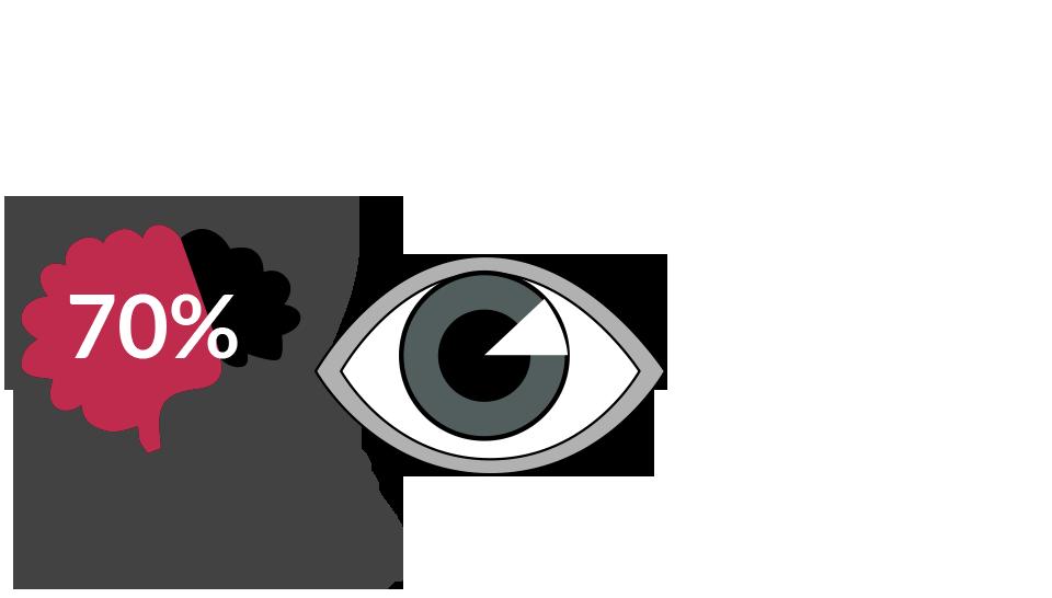 70% of your sensory receptors are visuals